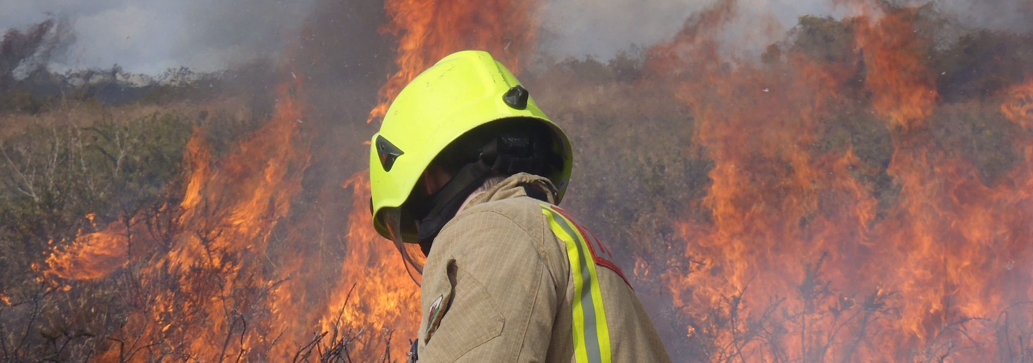 gower-commons-controlled-gorse-burn