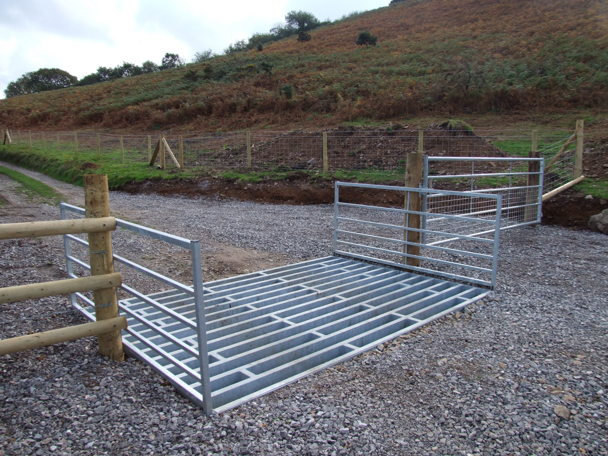 Cattle grids help keep animals from more dangerous areas of road